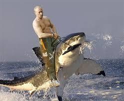 putin-shark.jpg